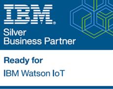 IBM Partner Logo - LogoDix