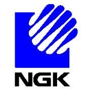 NGK Logo - LogoDix