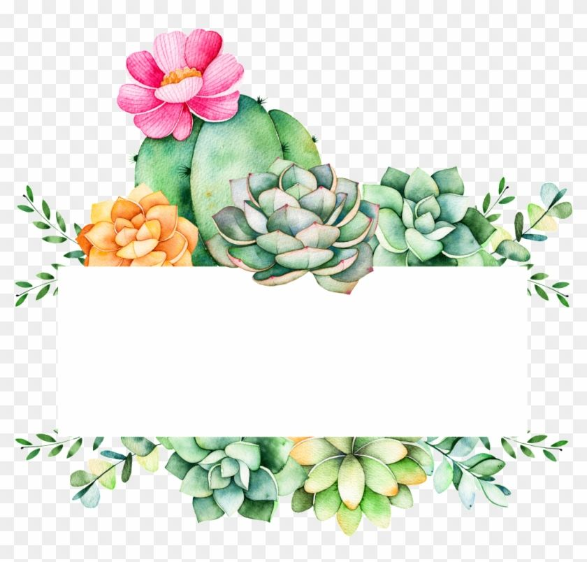 Succulent Logo - Easy To Grow Plants Cartoon Transparent - Succulent Logo, HD Png ...