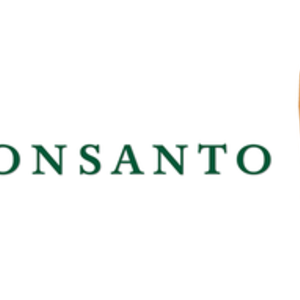 Monsanto Logo - Monsanto's cancer fight judge pictures weed killer showers ...