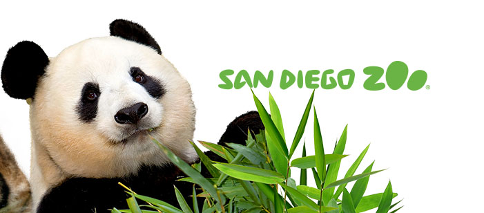San Diego Zoo Logo - Live Cams | San Diego Zoo Animals & Plants