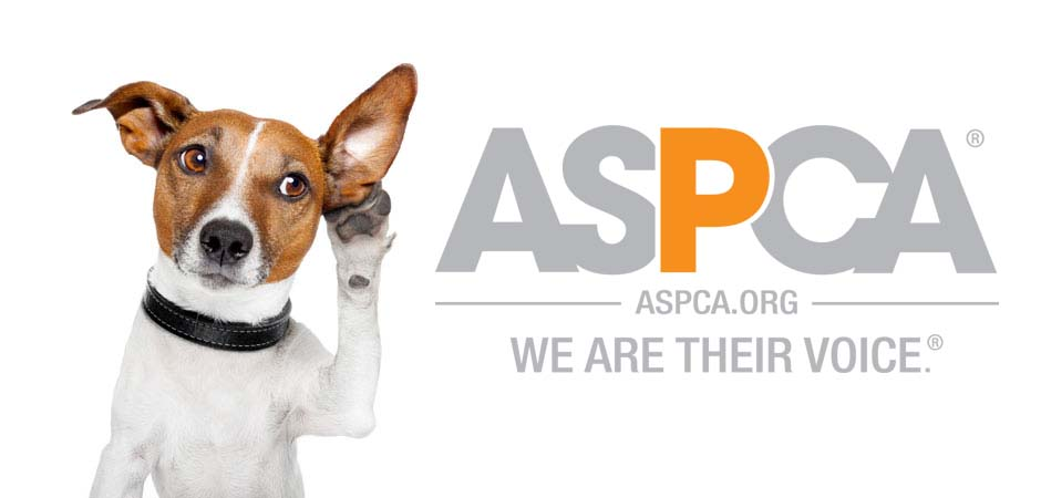 ASPCA Logo - Vote for the ASPCA - PetsBlogs