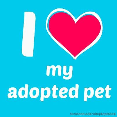Adopt-a-Pet.com Logo - Adopted pets are so incredibly lovable! Find your new best friend at ...
