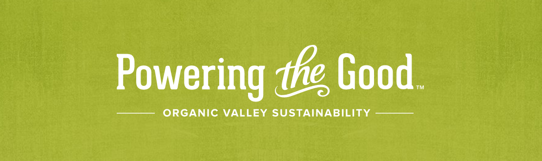 Organic Valley Logo - How We Helped the Organic Valley Quirky Farmers Save the World