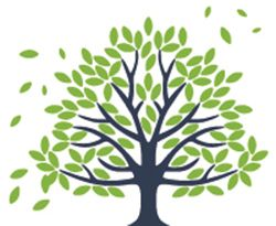 Family Tree Logo - Shake Your Family Tree: Family History Open Day | SA Community History