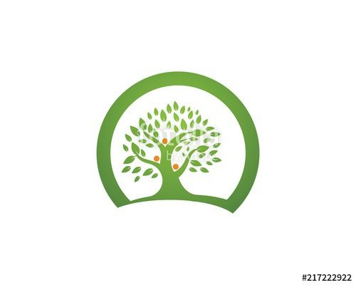 Family Tree Logo - family tree logo template vector illustration