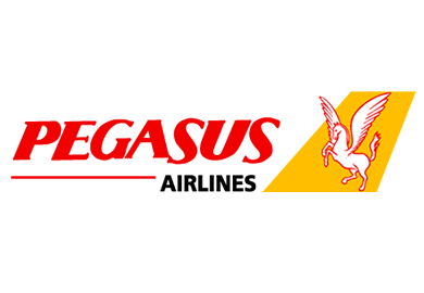 Image result for pegasus airlines logo""