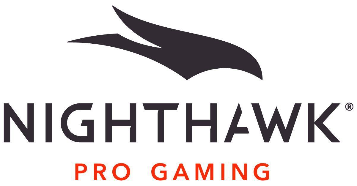 Image result for nighthawk logo