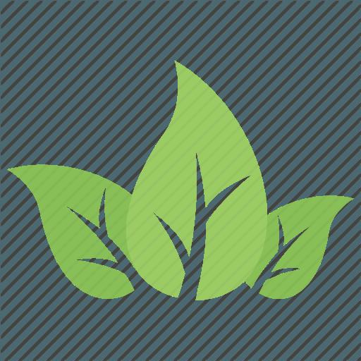 Three Green Leaves Logo Logodix