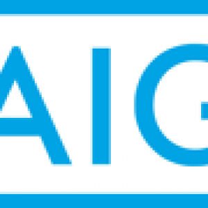 AIG Logo - AIG logo – Affordable American Insurance