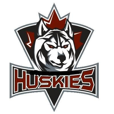 Cool Hockey Team Logo - Pincher Creek Voice: New Senior hockey team asks for a reduced cost ...