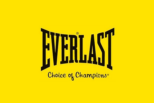 Everlast Logo - Everlast Dual-Station Heavy Bag Review | PunchWithStyle.com