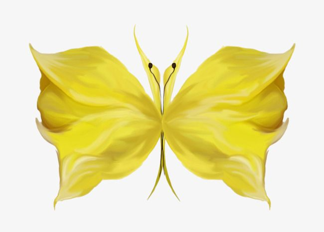 Yellow Flower Shaped Logo - Butterfly-shaped Yellow Flowers, Decoration, Butterfly, Flowers PNG ...