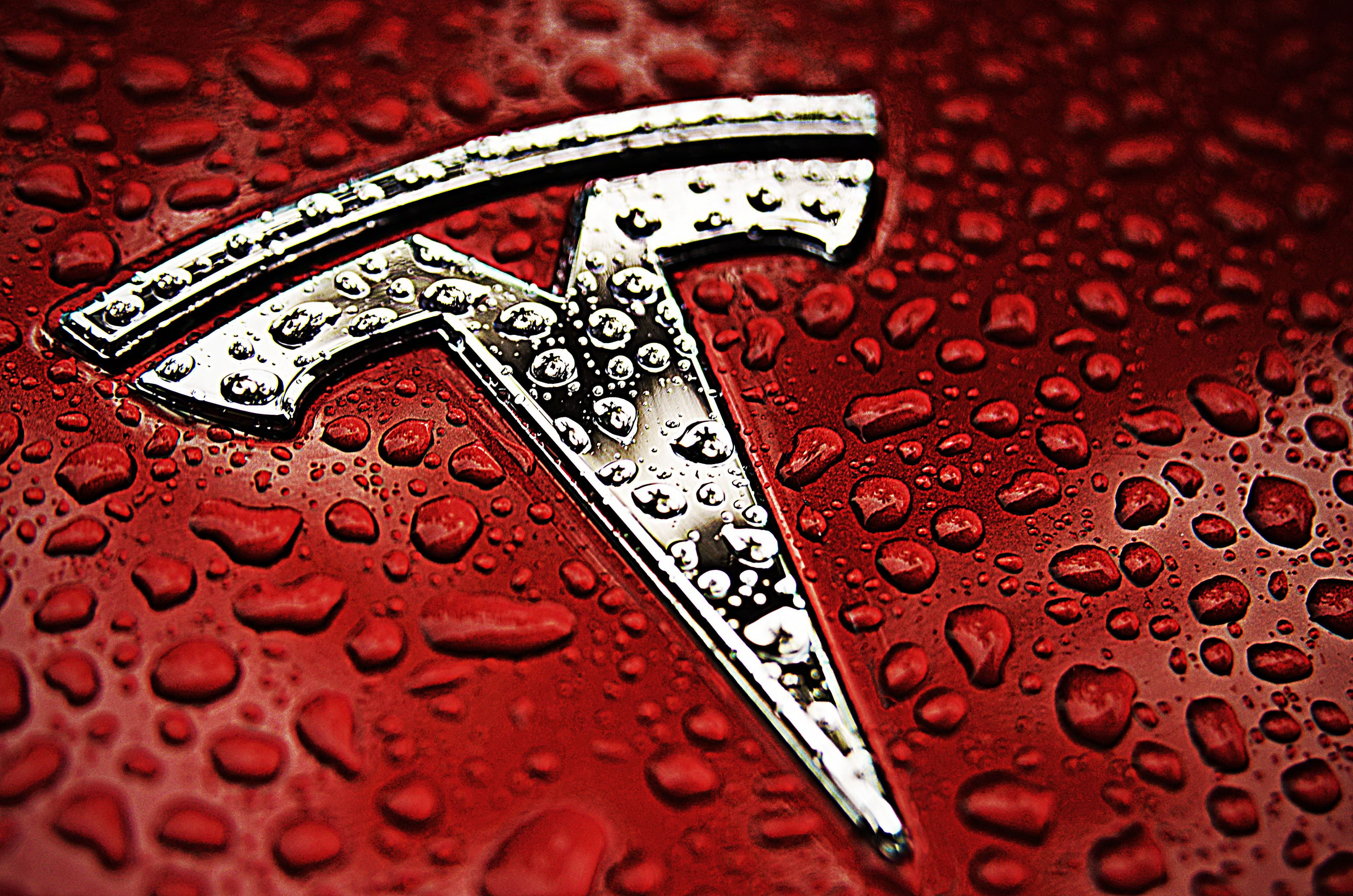 Red and Silver S Car Logo - Tesla Logo, Tesla Car Symbol Meaning and History | Car Brand Names.com