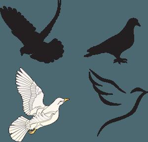 White Dove Logo - LogoDix