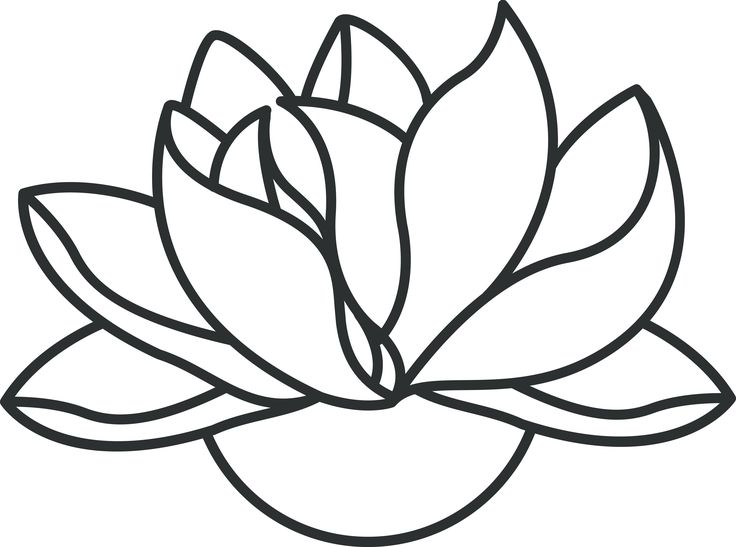 Simple Lotus Flower Logo Logodix