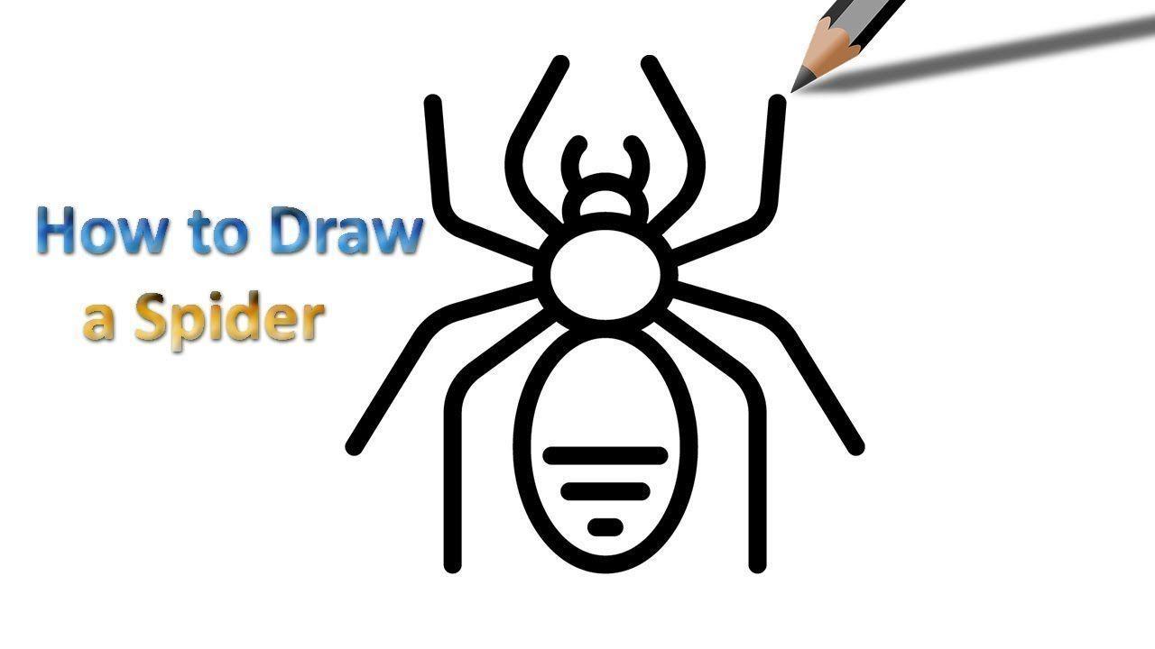 Easy Spider Logo Logodix