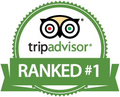TripAdvisor Logo - tripadvisor-logo - Mind Blown at the Madeline