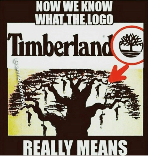 Timberland Logo - NOW WE KNOW WHAT THE LOGO Timberland | Meme on ME.ME
