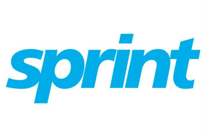 Sprint Logo - IPPF-SPRINT in Third United Nations World Conference on Disaster ...