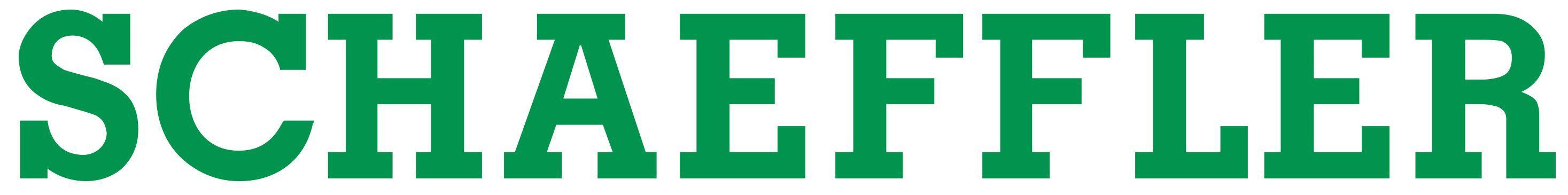 Kết quả hình ảnh cho schaeffler logo