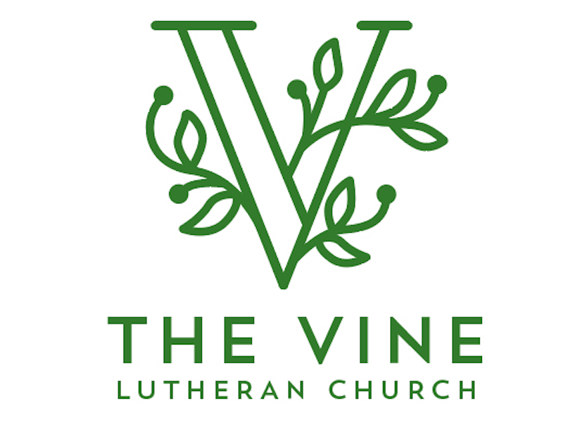 Vine Logo - Logo Concept for The Vine Lutheran Church | Dazzling Drop Caps ...